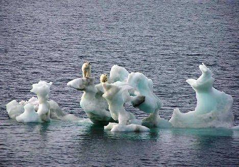 Les effets du réchauffement climatique, irréversibles... ?